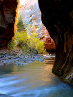 Zion National Park, UT - Zion Narrows
