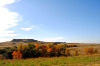 Bowman Area, ND - Fall Color