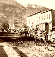 Ouray CO - Pack Train, 1909