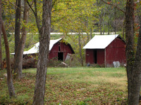 Scenic 7 Byway, AR - Barns