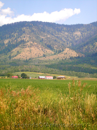 Teton Valley, ID - Farm - 2