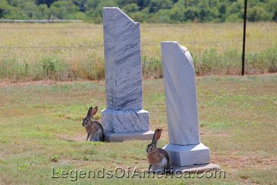 Mobeetie, TX - Cemetery Jack Rabbits - 2