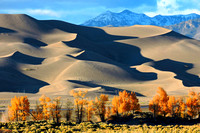 Great Sand Dunes, CO - 2