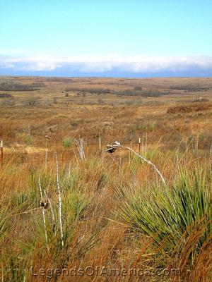 Texas Panhandle Plains - 2
