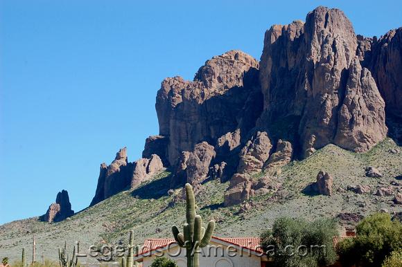 Apache Junction, AZ - Superstition Mountain Cactus