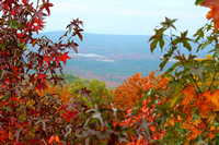 Mount Magazine, AR - Scenic Overlook