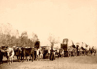 Black Hills, SD - Freighting, 1890