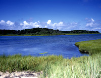 Beaufort, SC - Salt Marsh