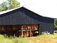 Kentucky Tobacco Barn - Enhanced