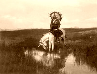 Cheyenne Indian, 1905
