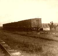 Abilene, KS - Loading Cattle, 1867
