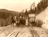 Yellowstone, WY - Stagecoaches, 1903