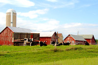 Shebogan, WI - Dairy Farm to the North