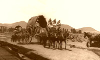 Mexican Wagons, 1890