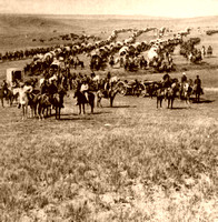 Cavalry and Wagons