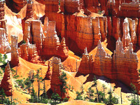 Bryce Canyon, UT - Hoo Doo Towers