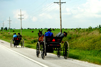 Amish In Missouri