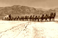 Death Valley, CA - 20-mule team, 1949