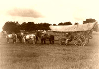 Wagons & Stagecoaches