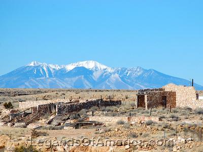 Two Guns, AZ - Mountain Lions