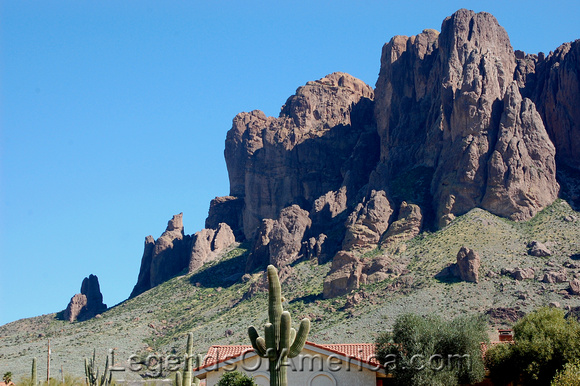 Apache Junction, AZ - Superstition Mountain Cactus