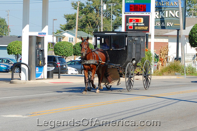 Shipshewana, IN - Amish Buggy - 2