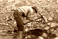 Gold prospector in NM