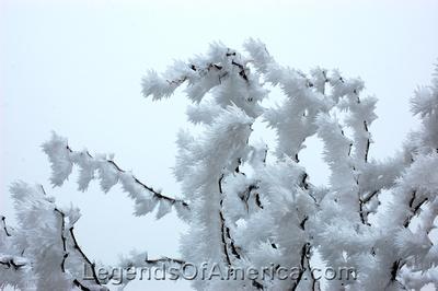 Kent, TX - Frost