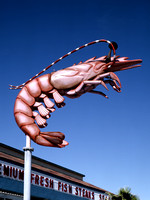 Galveston, TX - Seawall Shrimp Sign