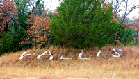 Fallis, OK - Welcome to Fallis.....