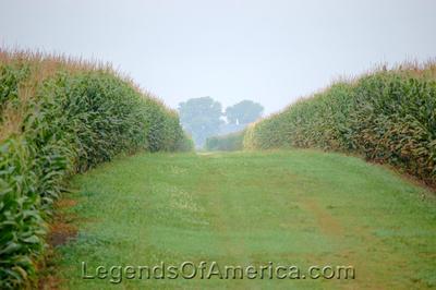 Iowa - Corn